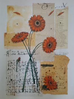 Gerbera Floral Print - 16.25