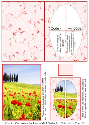 Window Sheets - Red Poppies Window RRP 75p