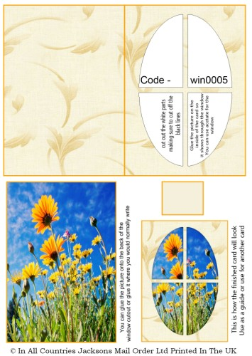 Window Sheets - Sunflowers Window RRP 75p